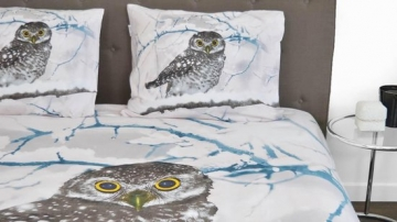 Snoozing Snowy Owl bed