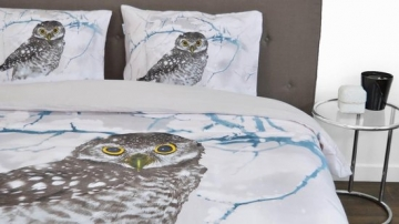 Snoozing Snowy Owl review